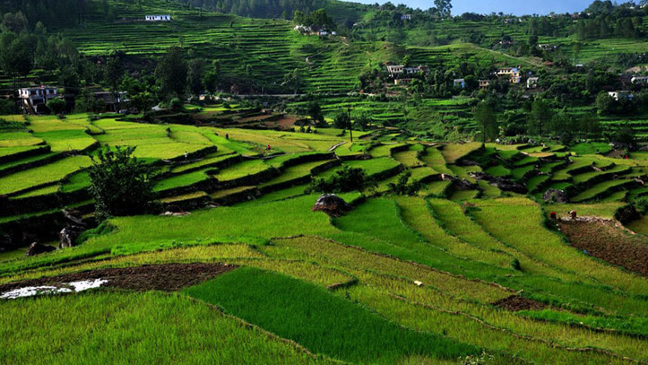 Kausani - Honeymoon places in Uttrakhand